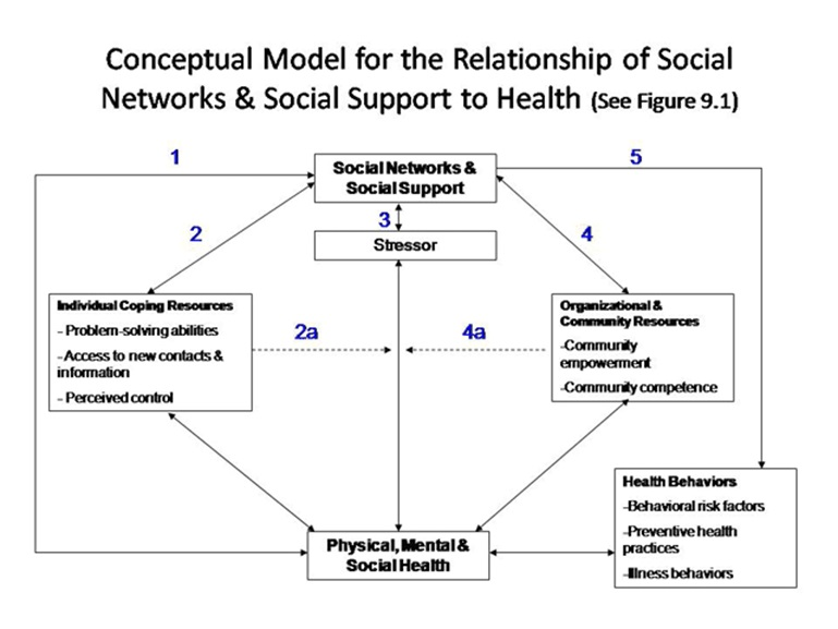 Abb. 3 Modell zum Beziehungsgeflecht von Sozialen Netzwerken und Sozialer Unterstützung mit Gesundheit [aus: Glanz et al (eds.), Health Behavior & Health Education, 4th ed. 2008, Chapter 9